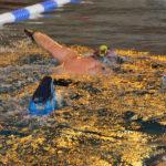 Leçons de natation adultes