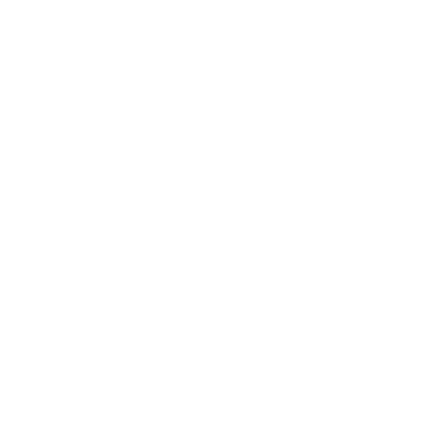 Power Duo